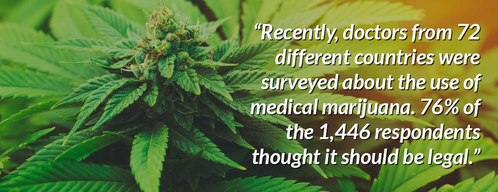 35 Incredible Marijuana Statistics 1