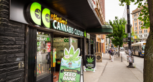 how to start a dispensary