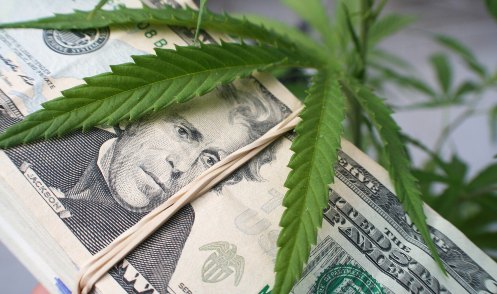 marijuana business ideas