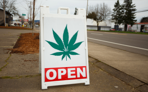 How to Start a Dispensary in Michigan