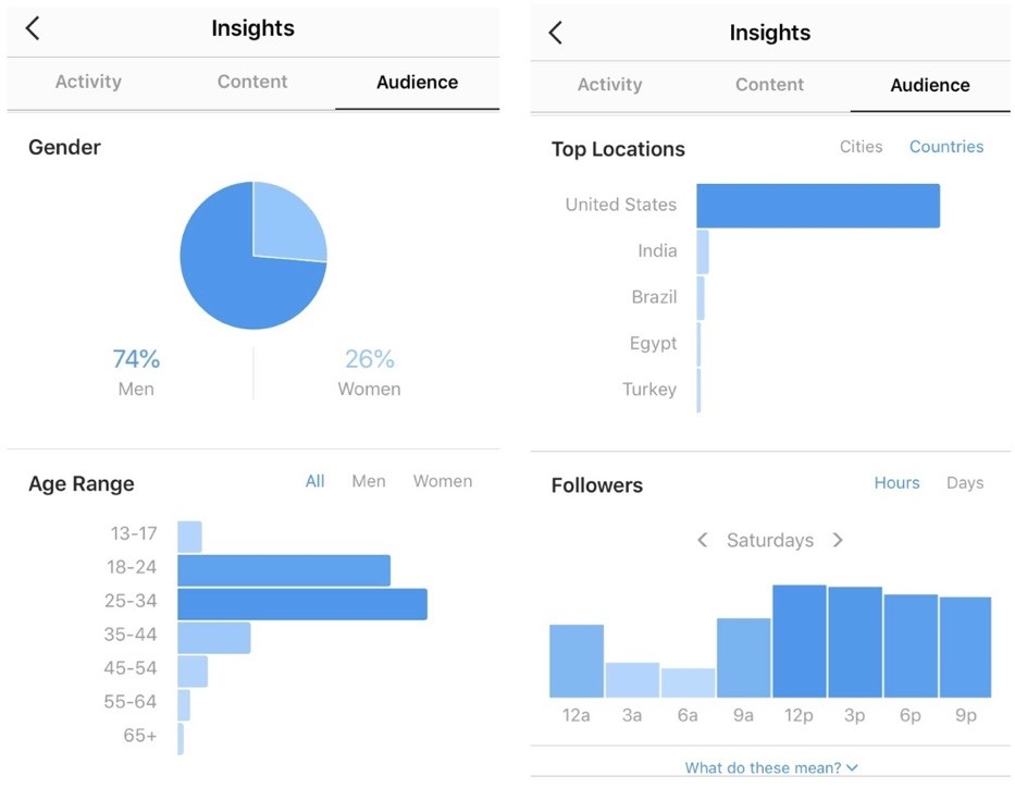 marijuana seo instagram follower insights