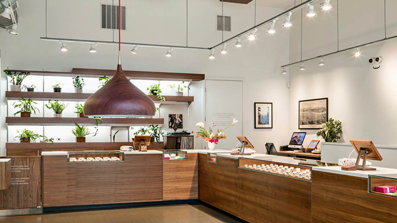 10 Most Beautiful Dispensaries in America 1