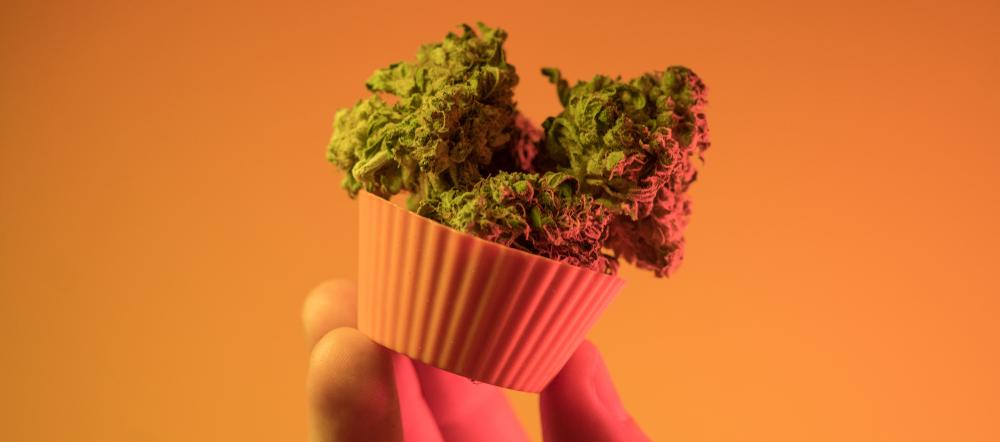 edibles 420 business