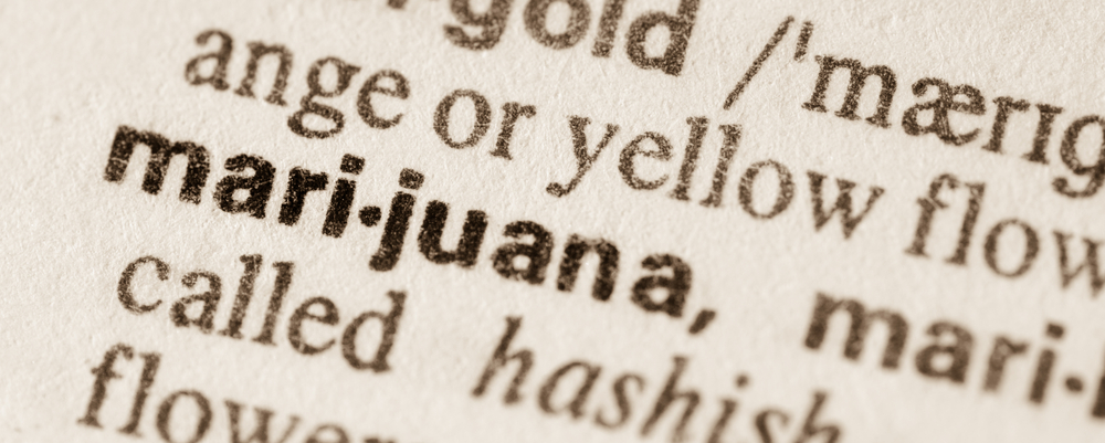 marijuana books 420 business