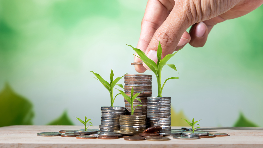 guide to cannabis business loans