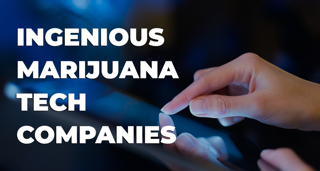 ingenious marijuana tech companies