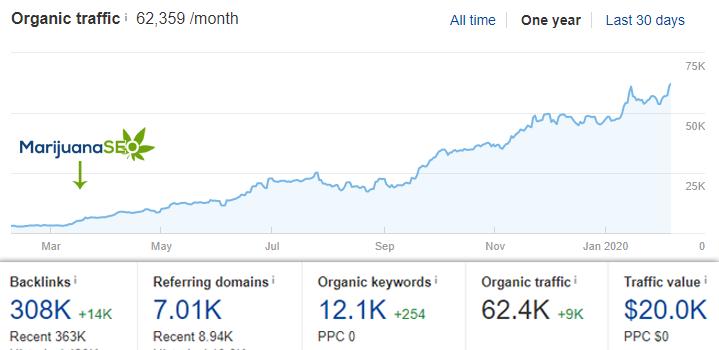 mj seo graphic organic growth