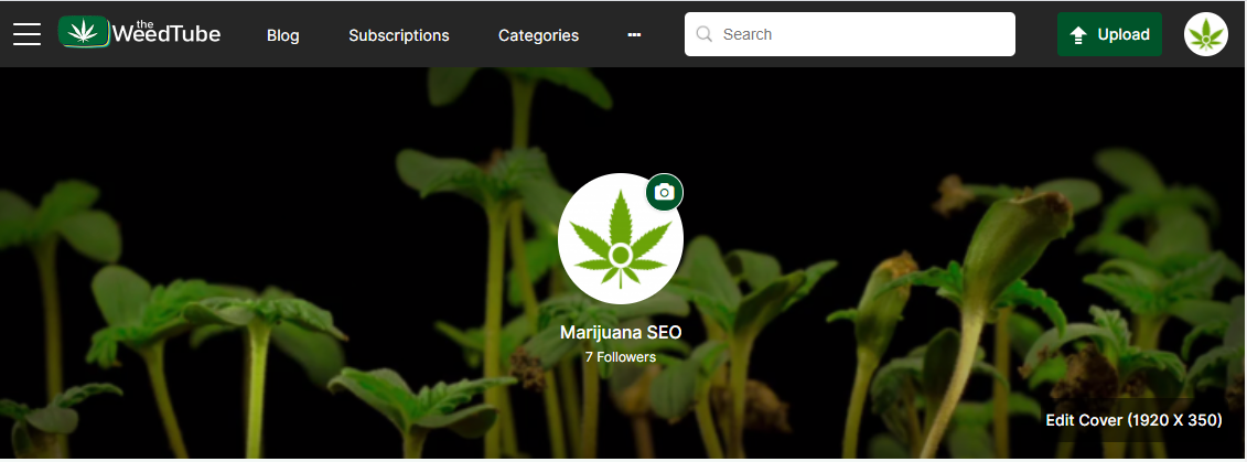the weedtube marijuana seo profile