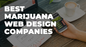 best marijuana web design companies